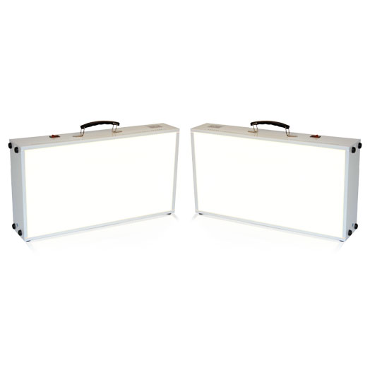 NorthStar Two-Pack Light Box